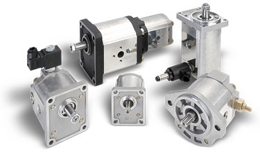 gear pumps and motors